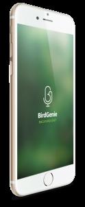 Bird Genie Loading